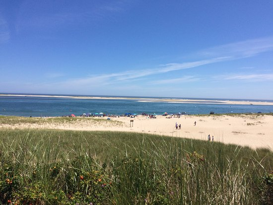 Chatham, MA: A view of the beach from the road