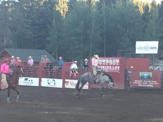 Yellowstone Rodeo: en plein coeur de l'action