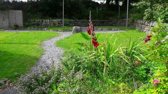 Ballyvaughan, Irlandia: Grounds full of flowers