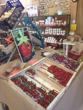 Siorac-en-Périgord, ฝรั่งเศส: divers fruits de saison