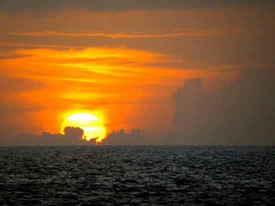 Blue Water Safaris: Sunset Cruise