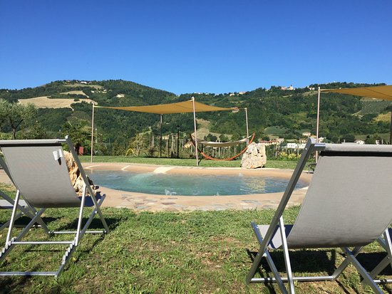 Colbordolo, İtalya: Vista Piscina