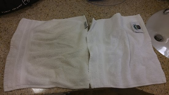 Best Western Plus Daphne Inn & Suites: I didn't use this towel