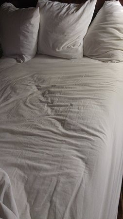 Daphne, AL: These sheets are not cleaned between guests