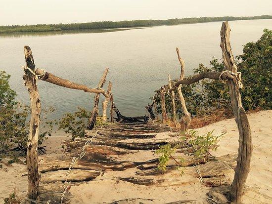 Fatick Region, Senegal: PLANGEZ DAN LA NATURE+ESCURSIONS GRATUITE SI PENSION COMPLETE