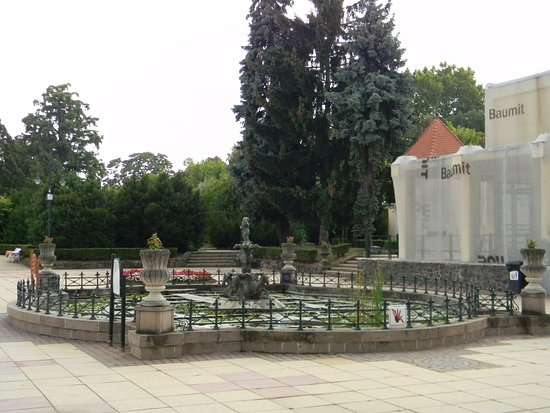 Eger, Hungary: lotus flowers