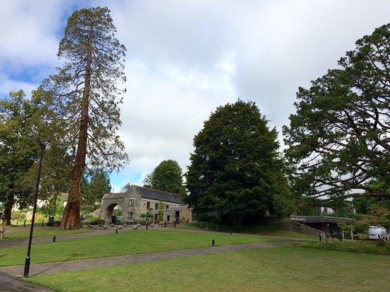 Buckfastleigh, UK: photo5.jpg
