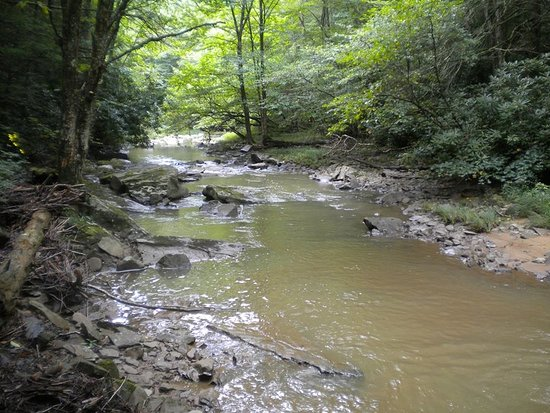 Camp Creek, Virgínia Ocidental: This is Mash Fork Creek.