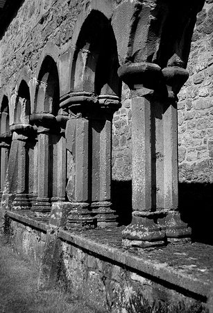 Ennis, Irland: The cloister.
