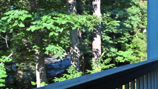 Wintergreen, VA: Balcony view