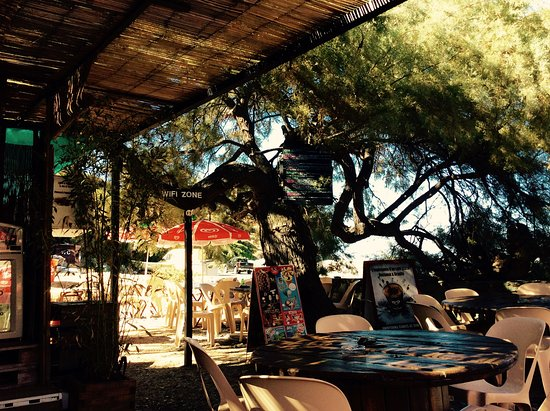 Ogliastro, Frankreich: Terrasse ombragée