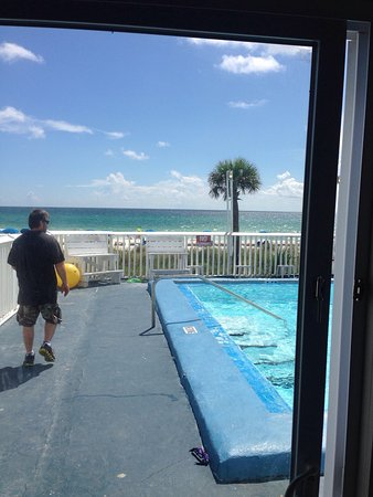Palm Grove: photo2.jpg