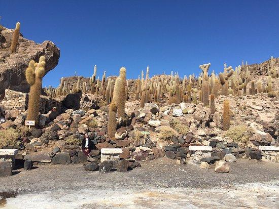 Uyuni, بوليفيا: photo3.jpg
