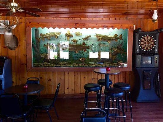 Land O' Lakes, WI: Native Fish