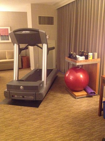 The Westin Cincinnati: Treadmill, exercise ball, mat, weights... complete exercise in room!