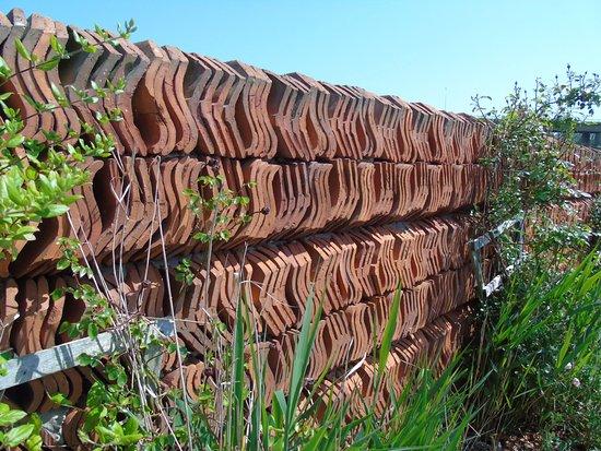 Barton-upon-Humber, UK: Walls made of roof tiles