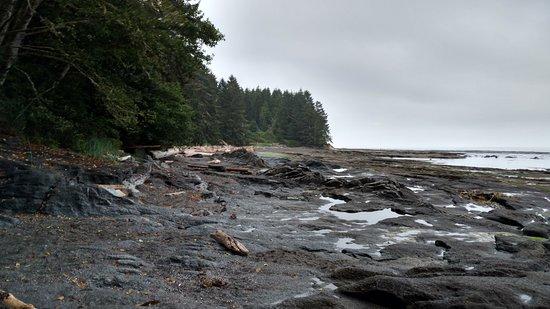 Port Renfrew, Canadá: Botancial Beach Tidal Pools