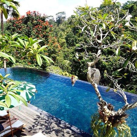 Tegalalang, Indonesia: photo1.jpg
