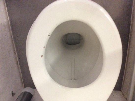Viechtach, Alemania: Toilettenbrille