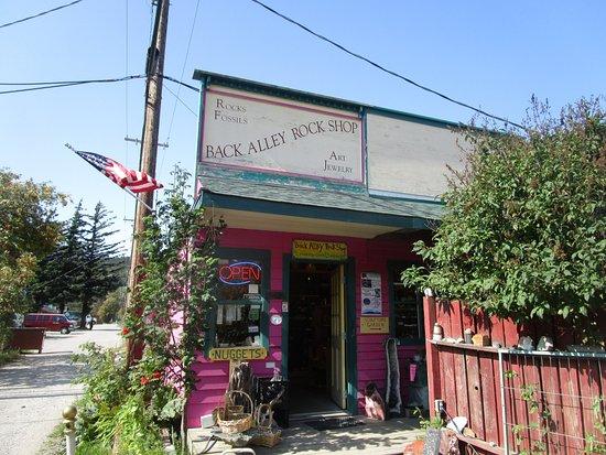 Back Alley Rock Shop