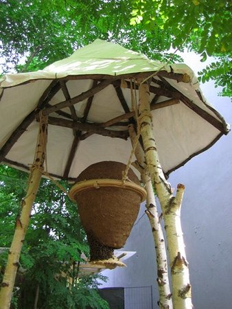 Prinzessinnengarten: nest