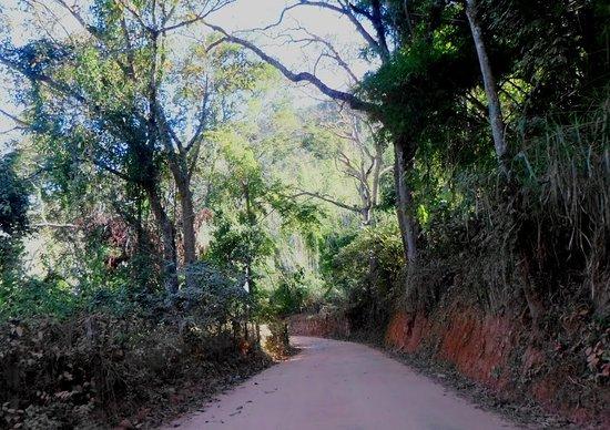 Paraíba do Sul, RJ: Ruína do posto de guarda e registro do ouro.