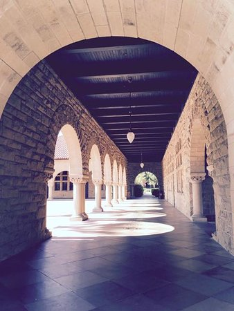 Пало-Альто, Калифорния: Stanford - adjacent to the quad