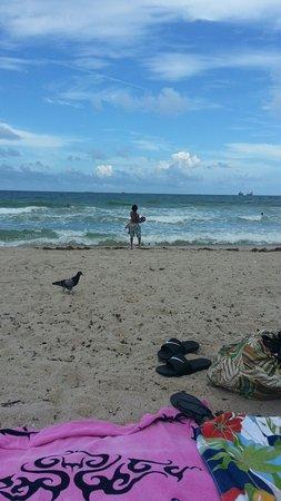 Fort Lauderdale Beach照片