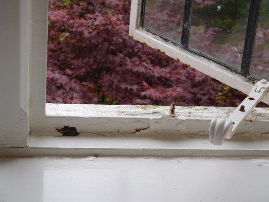 The Shelleys: window in the bedroom