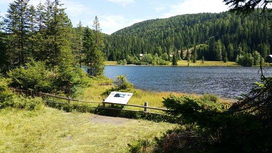 Tamsweg, Østrig: Eine der zahlreichen Infotafeln auf dem Moorlehrpfad rund um den Prebersee.
