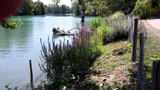 Warwick Reine Astrid - Lyon: tete d'or park