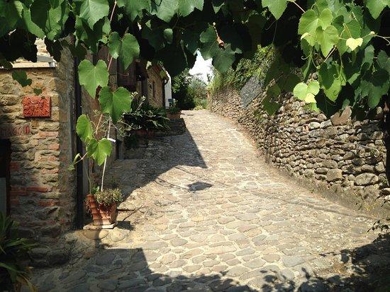 Osteria Locanda Il Canto del Maggio: Stone street of Il Canto del Maggio