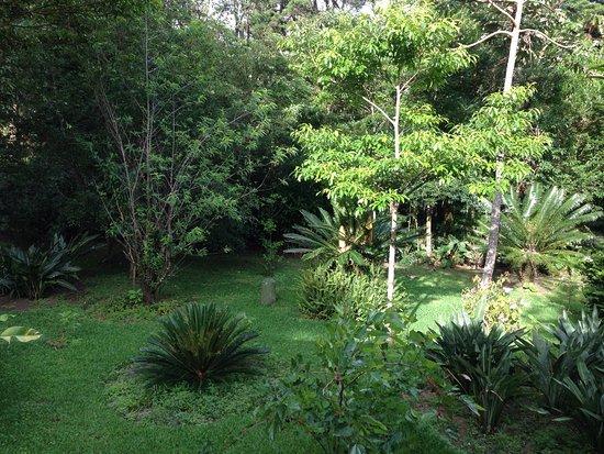 Cerro Plano, Costa Rica: photo3.jpg