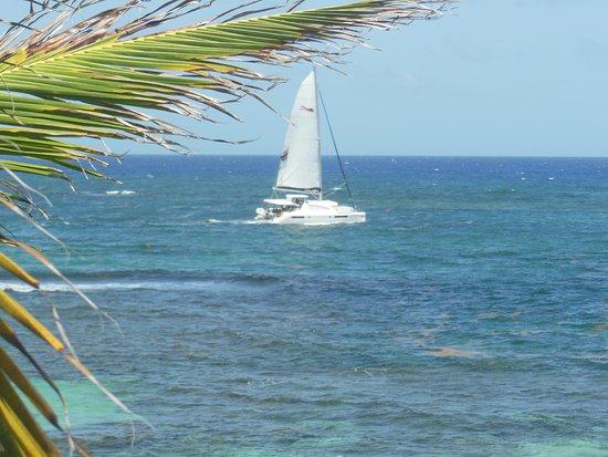 Oyster Bay Beach Resort: A beaut of a view.