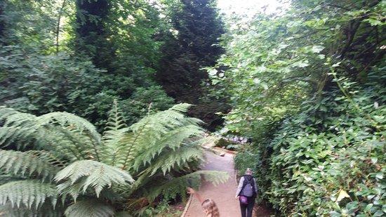 Ilfracombe, UK: Wonderful grounds