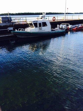 Parque Nacional Isle Royale, MI: Main pier