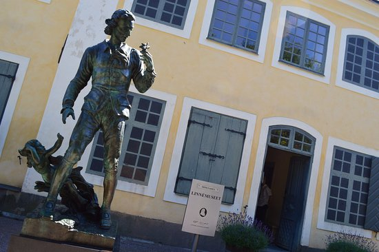 อุปซอลา, สวีเดน: Linnaeus Museum