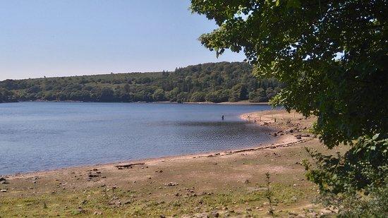 Burrator Reservoir: Further around the reservoir.