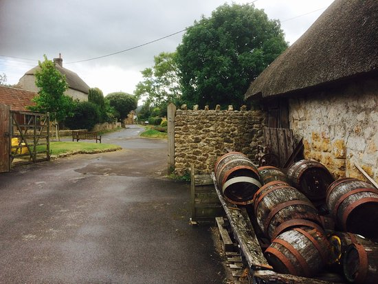 Ilminster, UK: View from Perry's Cider into village