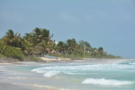 Almaplena Eco Resort & Beach Club Picture
