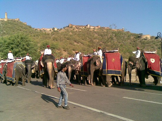 Rajasthan Tour With Car and Driver Private Day Tour