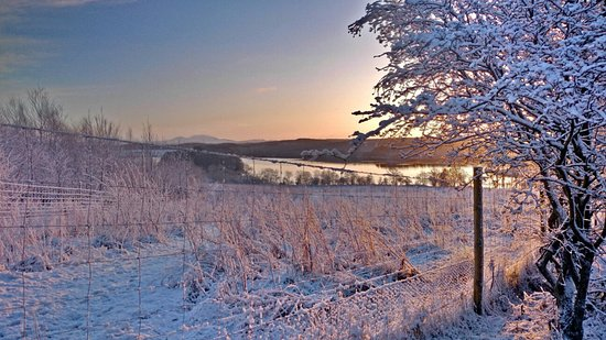 Alloa, UK: PC_20150129_084137_hdr_large.jpg