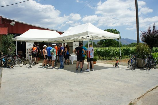 Tripoli, Hellas: Επίσκεψη οινοφιλων με ποδηλατο