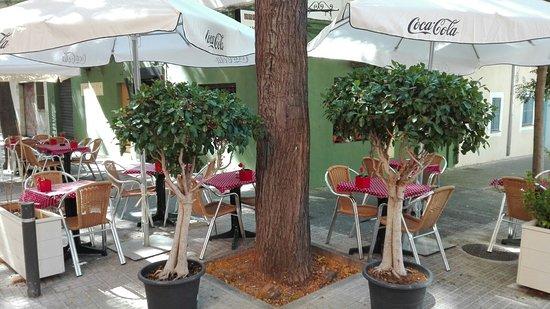 Palapa Restaurant & Bar : Terraza verano 3