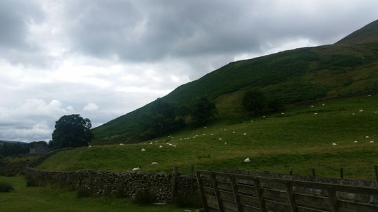 Sedbergh, UK: 20160730_135715_large.jpg