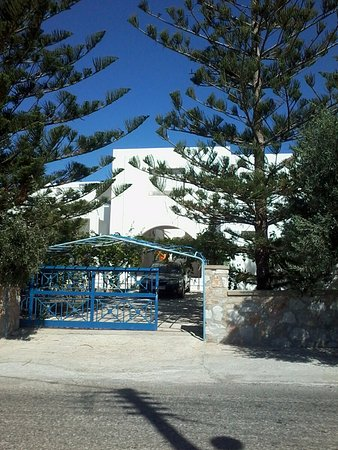 Megas Gialos, Griechenland: ΕΙΝΑΙ ΜΕΣΑ ΣΤΑ ΔΕΝΤΡΑ.