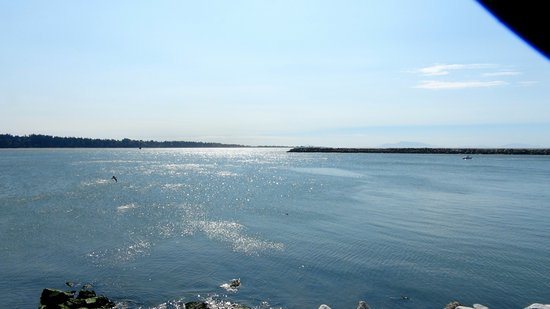 Tsawwassen, แคนาดา: View from parking area