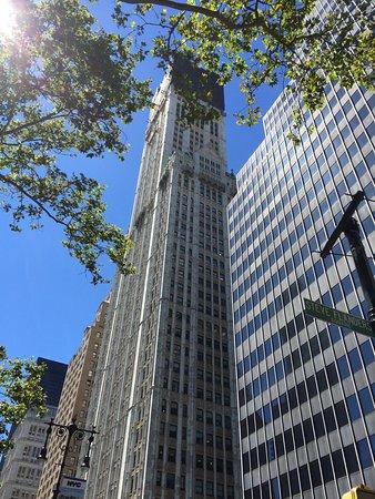 Woolworth Building: photo1.jpg