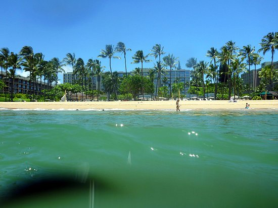 Marriott's Kaua'i Beach Club: Looking back to hotel from the pacific.