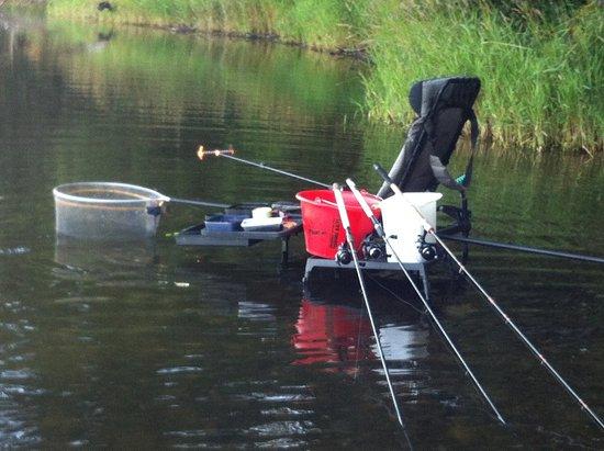 Esthwaite water trout fishery: Great fishing Great seenary